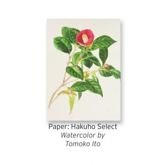 Hakuho Select
